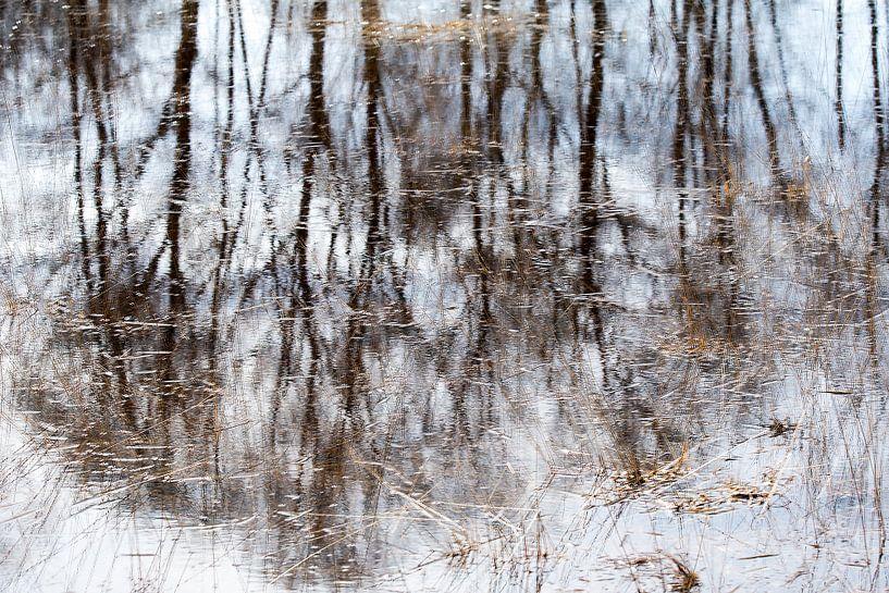 Reflecties in water. van Francis Dost