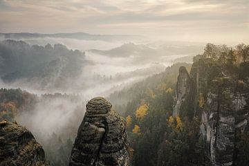 Brouillard sur les montagnes de grès de l'Elbe sur Rolf Schnepp
