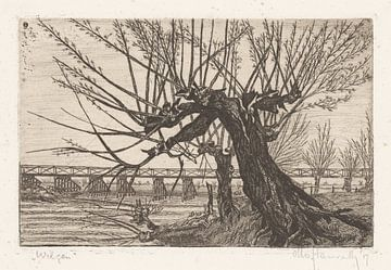 Weide, Otto Hanrath, 1917 von Atelier Liesjes