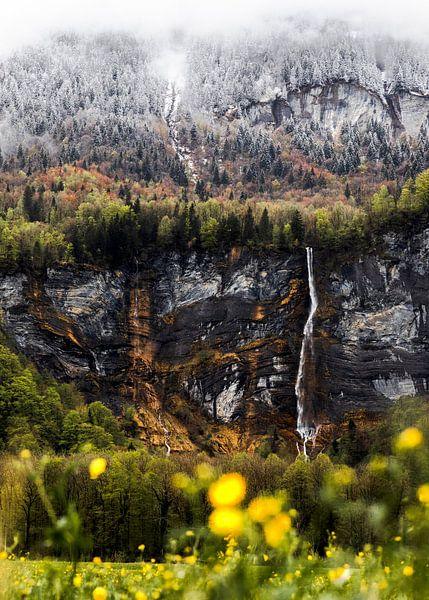 Waterval in Zwitserland | Sneeuw en bloemetjes van Yvette Baur