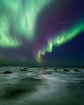 Lofoten Aurora von Peter Poppe