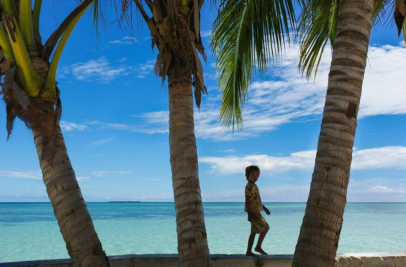 Tropische Palmen op Mabul Island, Maleisië van Sven Wildschut