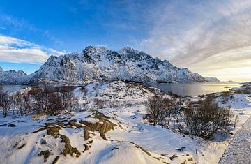Panoramazicht op de Austnesfjorden tijdens de winter in de Lofoten van Sjoerd van der Wal