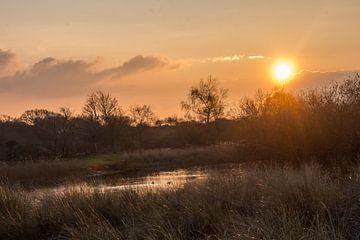 Sonnenuntergang von Carla Eekels