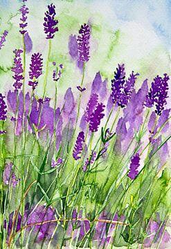 Perfume of Provence van Andrea Fettweis