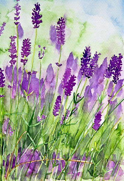 Perfume of Provence