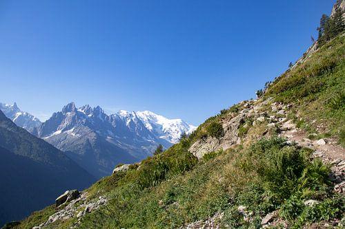 Uitzicht op de Mont Blanc in Frankrijk