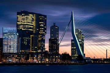 Skyline met de Erasmusbrug, Rotterdam van Tamara Versluijs