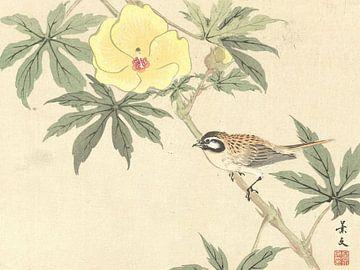 Vogel auf Ast mit gelber Blume von Matsumura Keibun - 1892