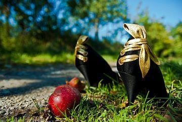 der Apfel / Verführung von Norbert Sülzner