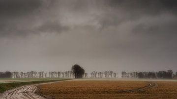 Polderlandschap in de winter von Jenco van Zalk