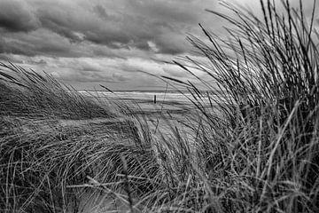 Het Hollandse Strand in Zwart Wit van Alex Hiemstra