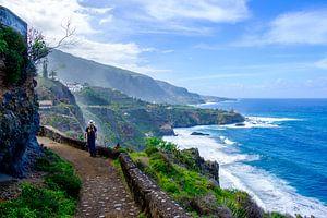 Wandelaar loopt over een pad met uitzicht over zee en kliffen. van