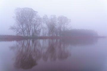 Dreamy Trees van Marcel Kieffer