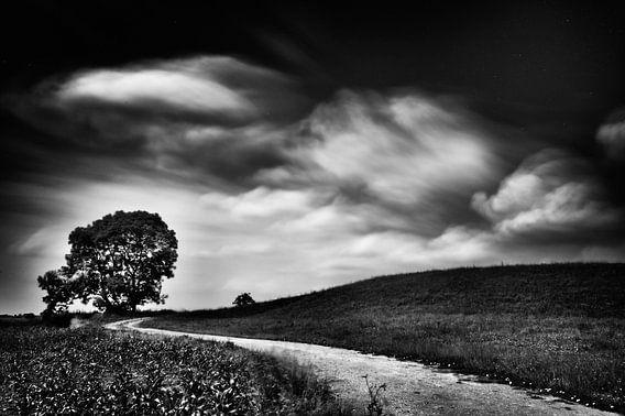 Slingerend weggetje op de dijk  met boom (zwart-wit)