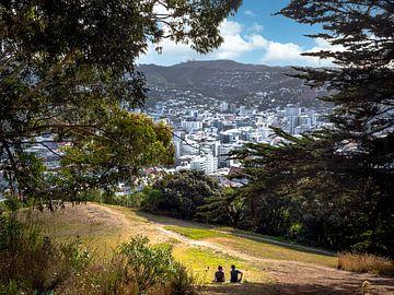 Skyline vanuit stadspark van Wellington Nieuw-Zeeland van Rik Pijnenburg