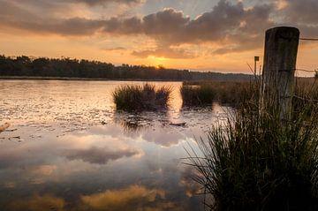 Winter nass Abend rot von Sean Vos