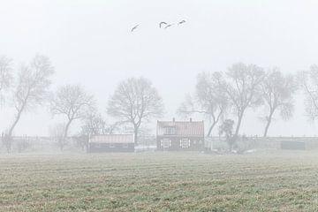 Winterlandschaft von Frank Peters
