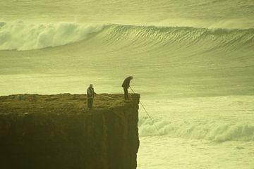 vissen tussen de golven van wil spijker