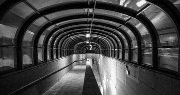 Tunnelvisie van R. Khoenie