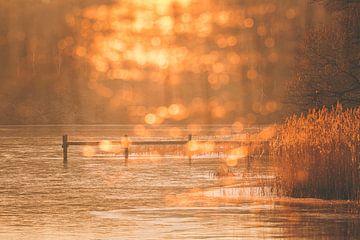 Ein Nachmittag am See von Regina Steudte | photoGina