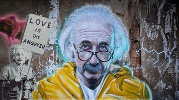 Street art Einstein van Rudy en Gisela Schlechter