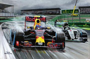 """2016 Grand Prix von Brasilien """"Rain King"""" Max Verstappen von Toon Nagtegaal von Adam's World"""