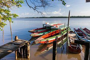 Boten op de Commewijne  rivier, Suriname