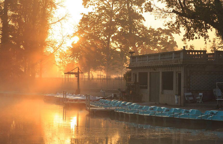 Parc de la Tête d'Or van Sander van der Werf