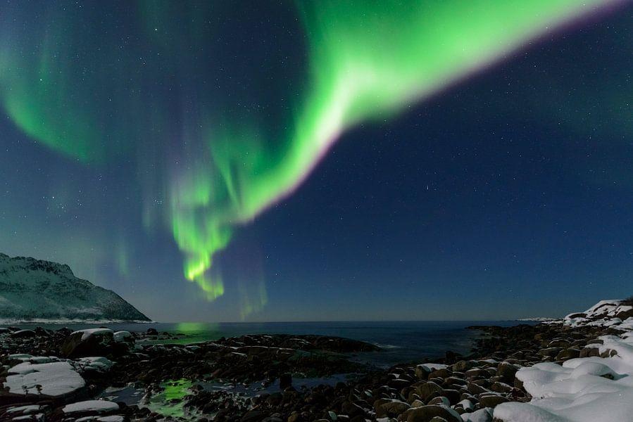 Poollicht of Noorderlicht in de nachthemel boven Noord-Noorwegen van Sjoerd van der Wal
