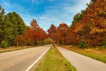 Oktober, een kleurrijk herfst sfeer van JM de Jong-Jansen