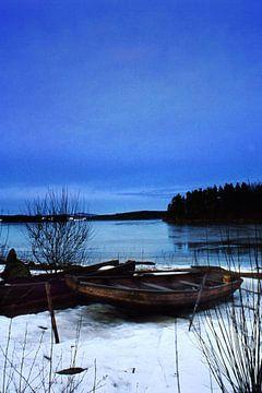 Winter van Bert Burkhardt
