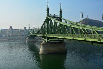 Le pont de la liberté à Budapest sur Marian Sintemaartensdijk