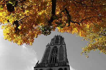 Domtoren met herfst kleuren van Erik de Geus