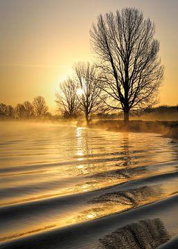 Zachte golven in een gouden morgen aan de Maas van R. Maas
