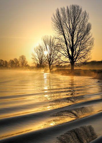 Zachte golven in een gouden morgen aan de Maas