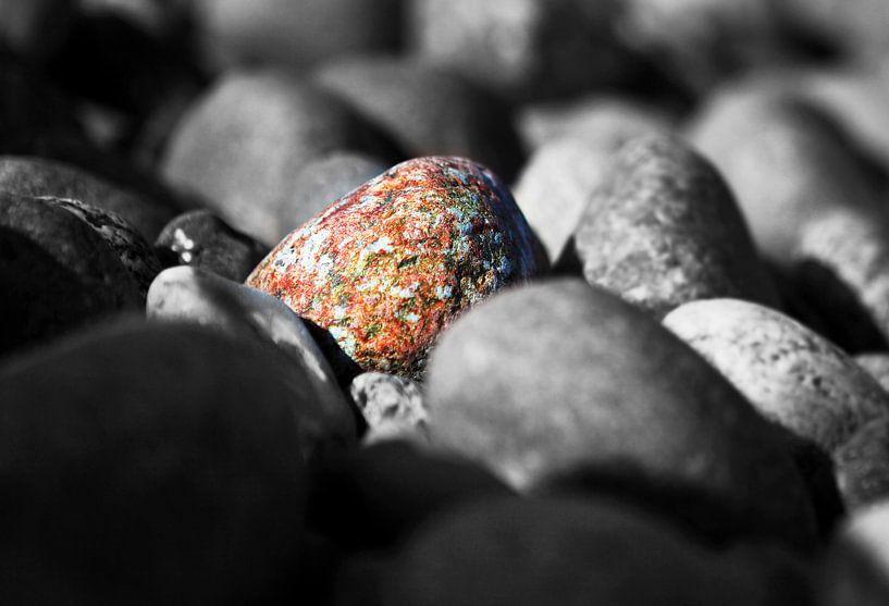 Ein bunter Stein unter monochromen Steinen von Frank Herrmann