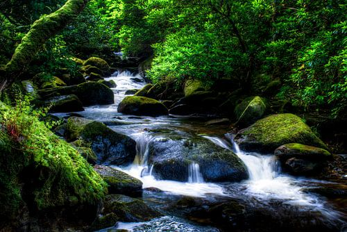 Torc Waterfall downstream, Killarney National Park, Ireland van Colin van der Bel