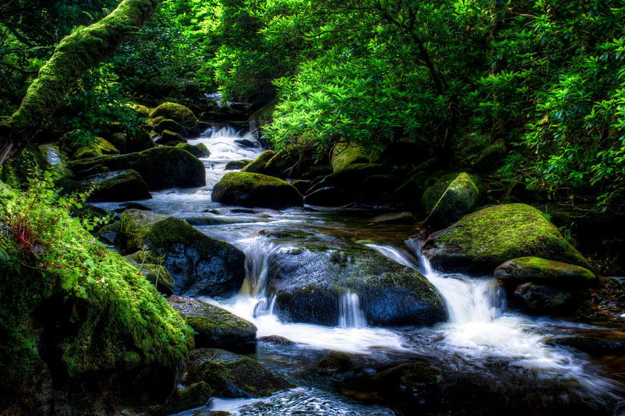Torc Waterfall downstream, Killarney National Park, Ireland