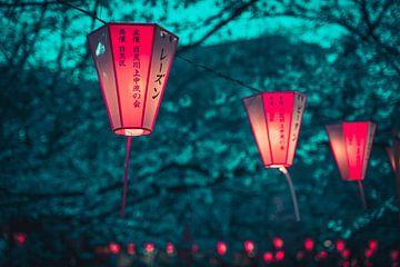 Lampion met kersenbloesems in Tokyo van Mickéle Godderis