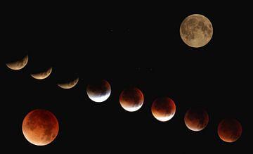 Art ; Lune rouge multiphase de sang sur Astrid Luyendijk