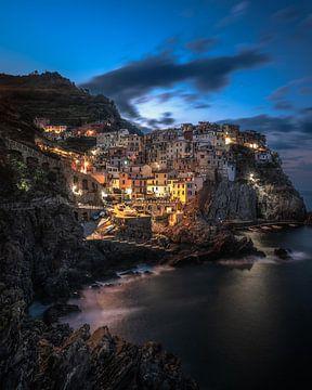 Manarola, Cinque Terre, Italie van Tim Kreike