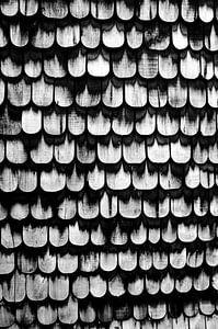 Dakpannen - Grafisch Patroon, Zwart Wit van