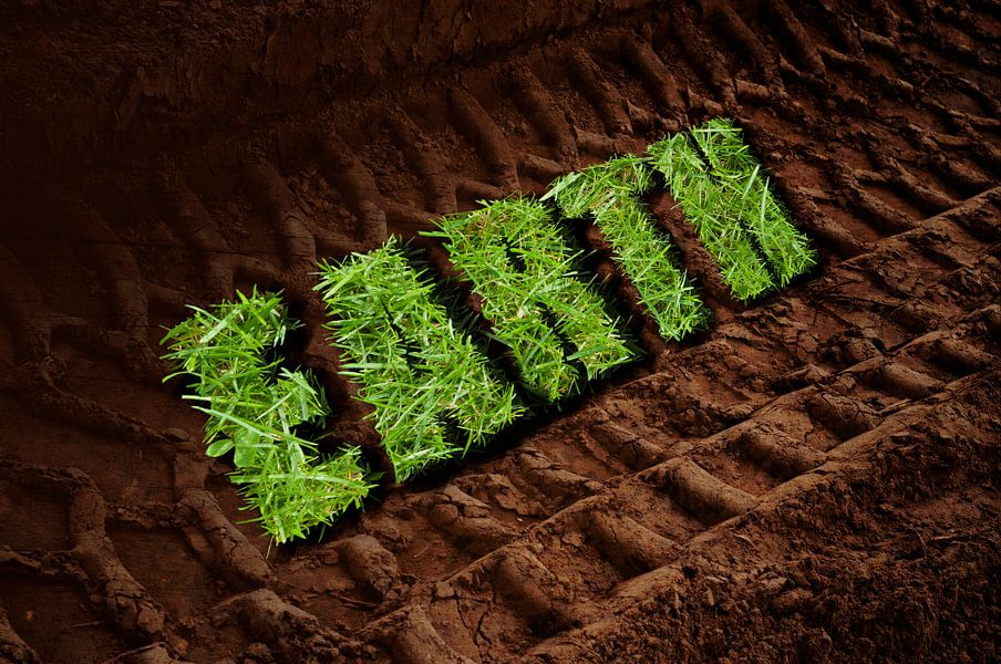 Earth van Patricia Verbruggen