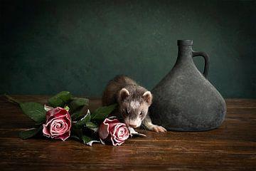 Stilleben eines Frettchens mit roten Rosen und einer blauen Vase vor grünem Hintergrund von Leoniek van der Vliet