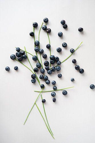 Blauw Fruit van