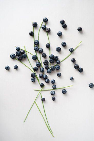 Blauw Fruit van Wendy Bos