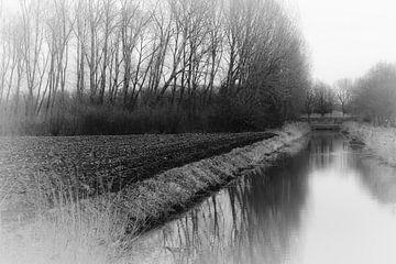Polderlandschaft von Edwin De smet