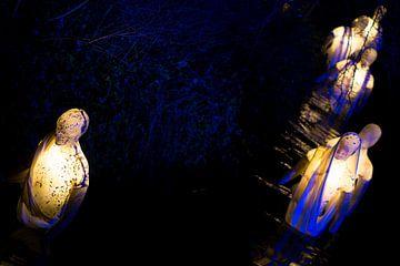 Mystischer Spaziergang durch das Wasser 2 von Ruud Dumas