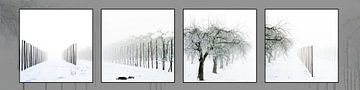 Grafische zwart-wit serie van landschap in de sneeuw van Saskia Nelissen